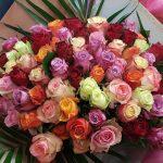 Fleurs Capucine